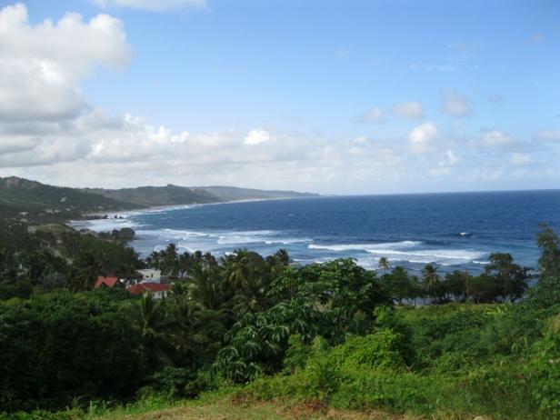Barbade_6319.jpg