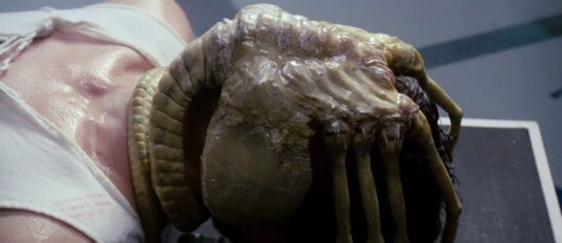 Facehugger. Photo trouvée sur avp.fandom.com